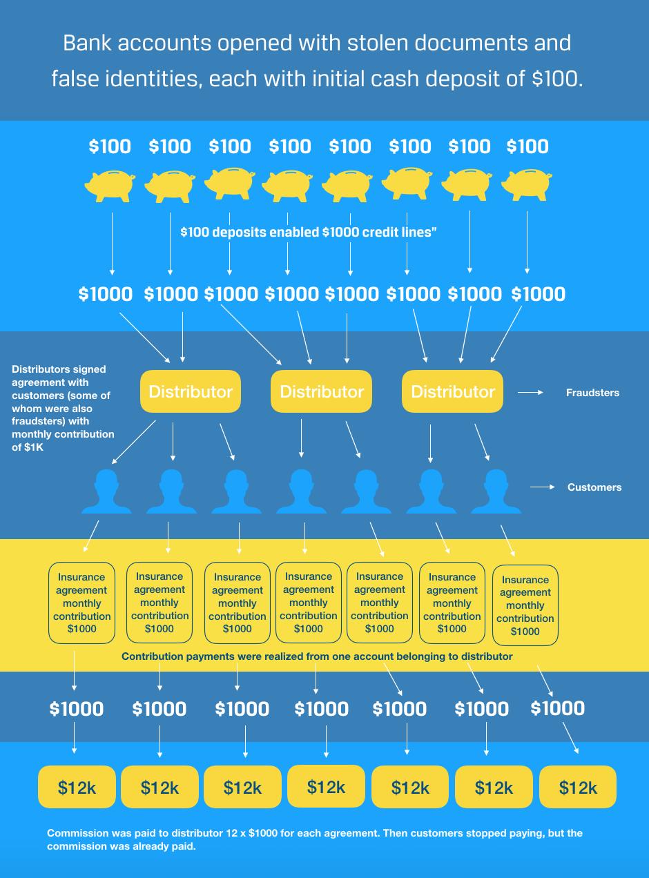 DataWalk infographic