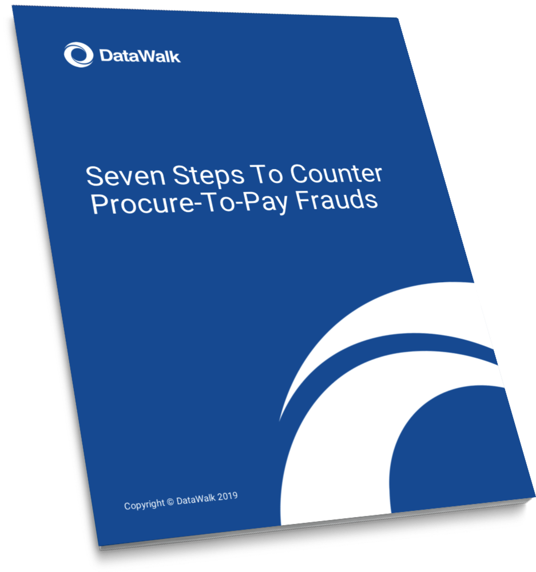 DataWalk Seven Steps To Counter Procure To Pay Frauds