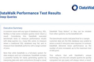 DataWalk performance test