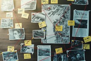 DataWalk Investigation Software