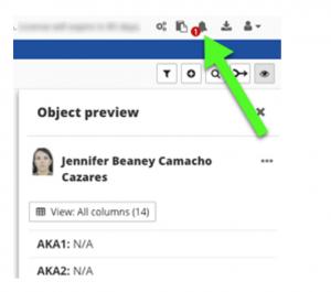 Figure 12. Example alert notification in DataWalk.